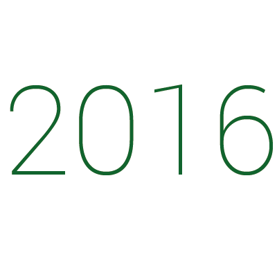 2016 icon3