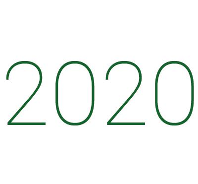 2020 icon2